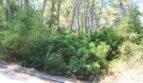 Grundstück mit leichtem Baumbestand
