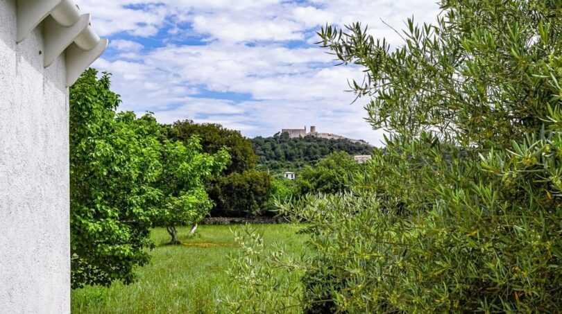 Gepflegtes Gelände mit vielen Bäumen