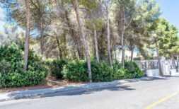 Grundstück in zentraler Ortslage von 6400 m² mit besonderen Nutzungsmöglichkeiten