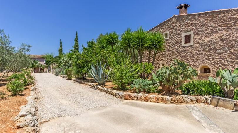 Weg durch den mediterranen Garten