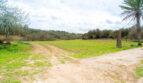 Blick Richtung Grundstück 3