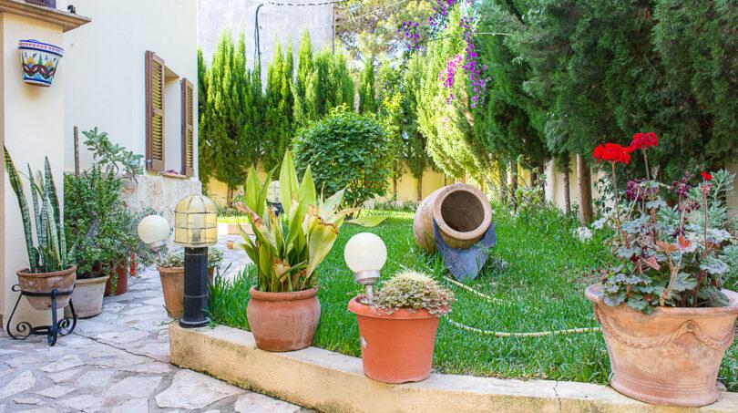 Impressionen vom Garten